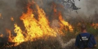 RIAN_archive_733844_Forest_fires_ravaging_near_Novovoronezh_Nuclear_Power_Plant-400x267 - NewNN.Ru