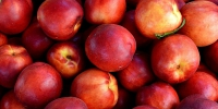 Nectarines 1111852 960 720 - NewsNN.Ru