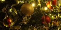 Christmas tree 708002 960 720 - NewsNN.Ru