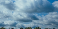 Clouds cloudy forest sky trees 1140x1140 izcfoikwo - NewsNN.Ru