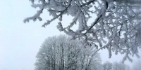 Winter 3107745  340 - NewsNN.Ru