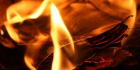 The flame 3340762 960 720 - NewsNN.Ru